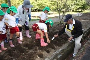 園児達と球根を植える長坂会長