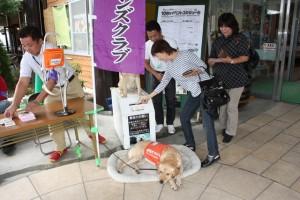 盲導犬育成のための募金、ありがとうございました。