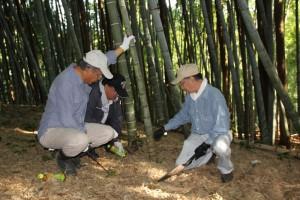 傾斜地で密集した竹を斬るメンバー