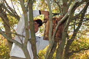 協力して作った巣箱を設置しました